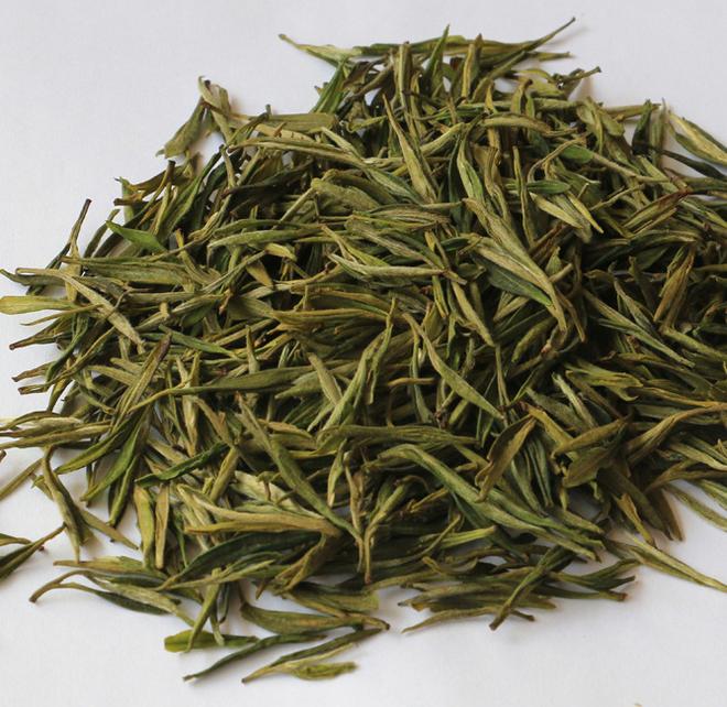wild camellia tea