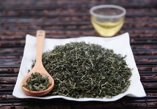 Duyun Maojian tea